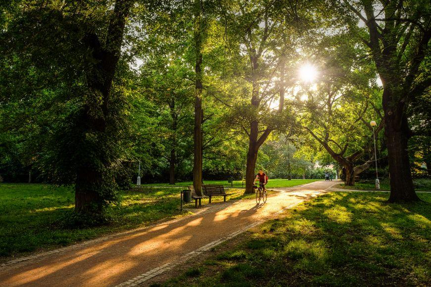 Největší městský park Lužánky.