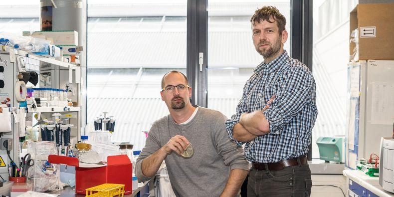 Jedni z autorů studie Mário Špírek (vlevo) a Lumír Krejčí z Masarykovy univerzity.