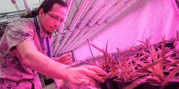 Experimentální skleník poslouží výuce i výzkumu.