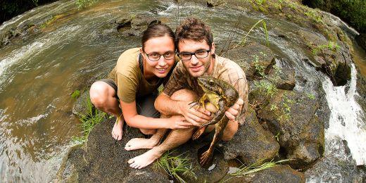 V Kamerunu studenti pracovali s největšími žabami světa. Veleskokan goliáší může vážit přes tři kila. Je velmi vzácný a ví se o něm jen málo.