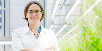 Hélèn Robert Boisivon zkoumá molekulární a buněčné mechanismy signálních drah, především rostlinných hormonů, které ovlivňují růst a vývoj rostlin.