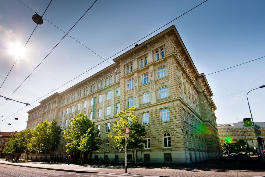 I study at the Faculty of Social Studies at Masaryk University.