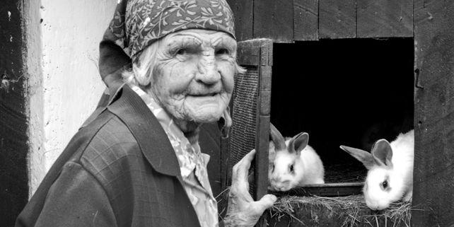 Ilustrační foto: Archiv Pavla Klvače.