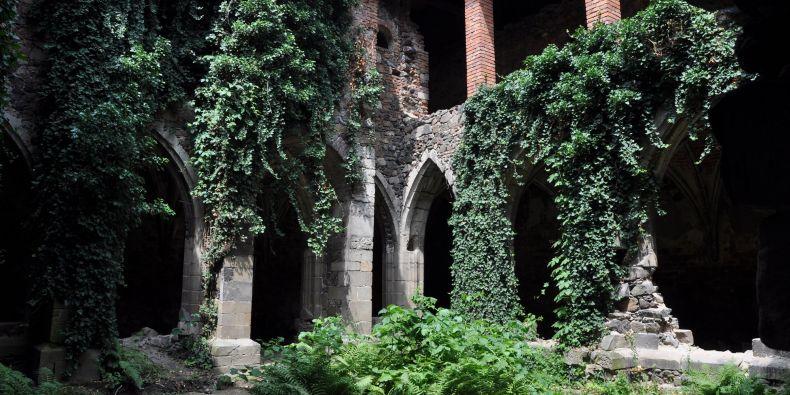 Klášter Rosa Coeli postavený v roce 1181 je dnes jen zřícenina, láká ale návštěvníky svou tajemnou atmosférou.
