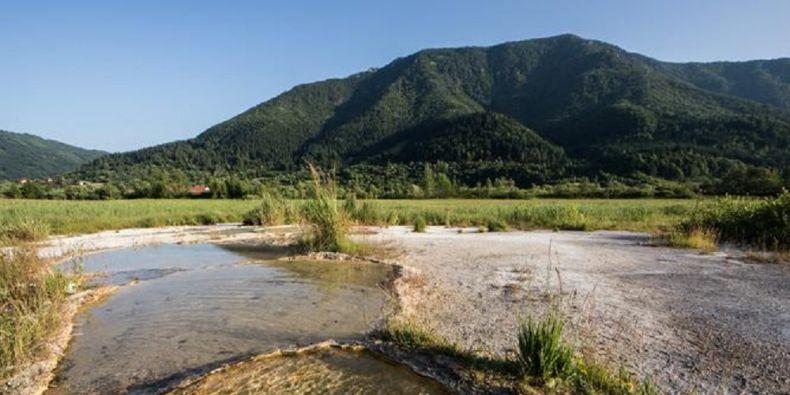 V Evropě unikátní společenstva rostlin, měkkýšů, ale i dalších bezobratlých žijí u Stankovan na otevřených mokřadech, kde na povrch vyvěrají prameny s vysokým obsahem vápenatých a hořečnatých iontů a solí.