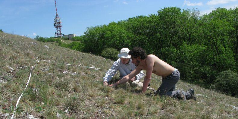 Zápis druhového složení rostlinného společenstva na trvalých plochách na Děvíně na Pálavě. Jiří Danihelka (vlevo) a Gianmaria Bonari (vpravo).