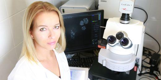 Terezie Mandáková prozkoumala spolu s Martinem A. Lysákem genom bezmála dvaceti druhů brukvovitých s využitím metody srovnávacího malování chromozomů a sekvenace transkriptomů.