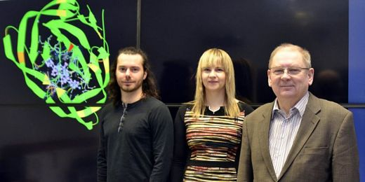 David Sehnal, Radka Svobodová and Jaroslav Koča from CEITEC Masaryk University.