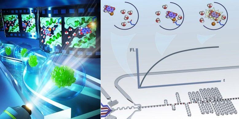 Grafické ztvárnění mikrofluidní platformy.