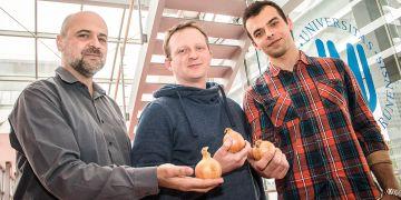 Left to right: Jiří Fajkus, research team leader; Vratislav Peška, unusual telomere project leader; Petr Fajkus, lead author of the study.