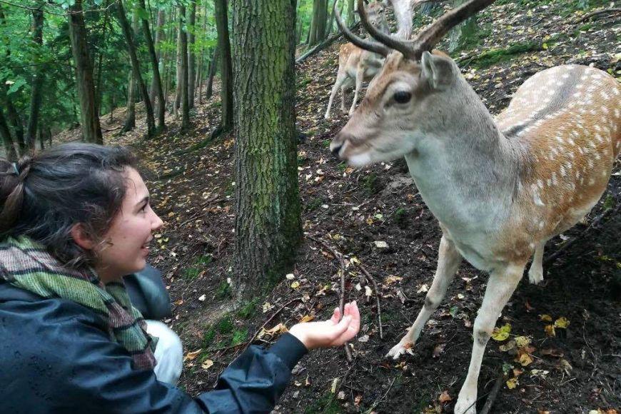Solange exploring Brno and visiting popular deer park.
