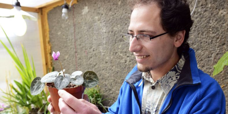 Pavel Veselý s bramboříkem nachovým, který patří mezi rostliny s velkým genomem. Foto: David Povolný.