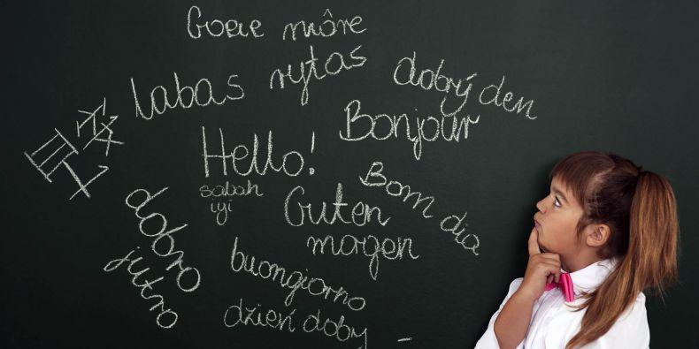 Který jazyk vybrat?