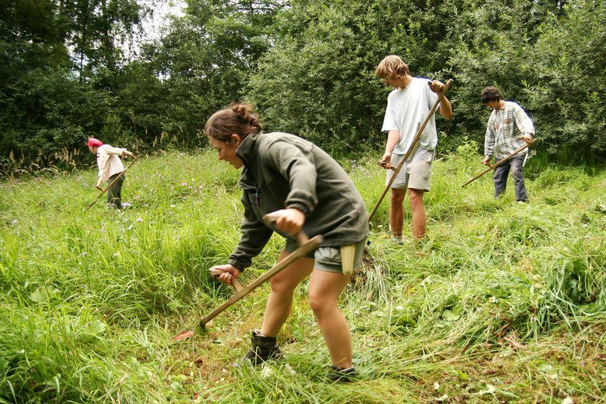 O louky bohaté na rostlinné druhy je potřeba stále pečovat. Musí se pravidelně kosit, aby postupně nezarostly vysokými travami apozději ilesem.
