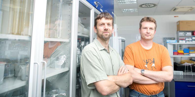 Lumír Krejčí and Kamil Paruch.