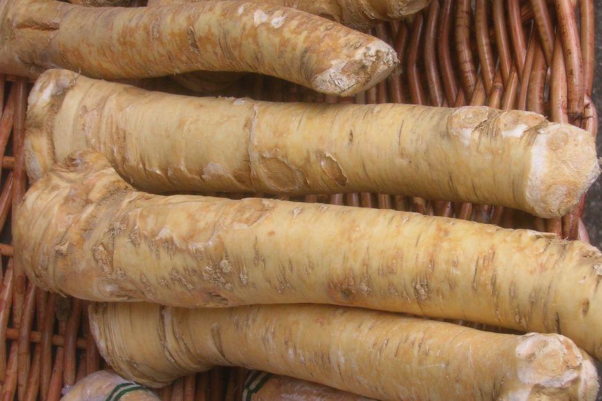 Křen se využívá především ke kořenění různých jídel od uzenin po omáčky, je ale také zdrojem celé řady vitamínů aminerálů.