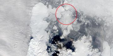 Mořský led nahromaděný v ústí průlivu Antarctic Sound (snímek z 25. února) zkomplikoval stažení expedičního týmu ze stanice Johanna Gregora Mendela.