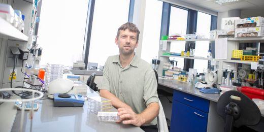 Lumír Krejčí spolu s kolegy vyvíjel a testoval takzvané inhibitory nukleáz. Nukleázy jsou enzymy, které se podílejí na opravě poškozené DNA.