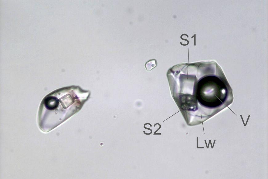 Dvojice fluidních inkluzí vkřišťálu. Uvnitř jsou kromě kapalného vodného roztoku (Lw) abubliny (plynná fáze – V) ipevné fáze – minerály: S1 je halit (NaCl) aS2 je kalcit (CaCO3). Ve druhé inkluzi chybí kalcit, aje vidět jen kostička halitu. Větší inkluze má velikost 55mikrometrů.