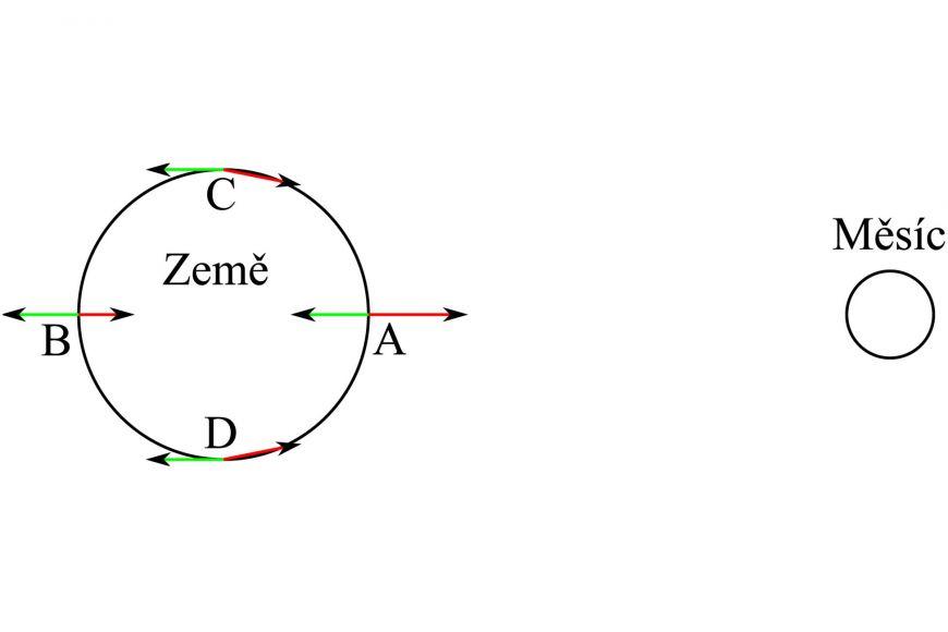 Obr. 1: Síly působící na části zemského povrchu vlivem přitažlivosti Měsíce arotace kolem společného těžiště.  Odstředivé síly jsou znázorněny zeleně, gravitační síly od Měsíce červeně. Výslednice sil vbodech AaB směřují pryč od středu Země avoda je vtěchto místech nadlehčována, zatímco vbodech C aD výslednice směřují do středu Země avoda je zde tlačena ještě více kzemi. Obrázek není vměřítku, Měsíc je ve skutečnosti mnohem dále od Země.