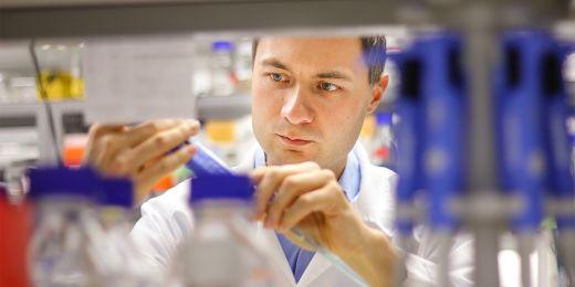 Plevka zaznamenal velké úspěchy pří výzkumu takzvaných včelích virů.