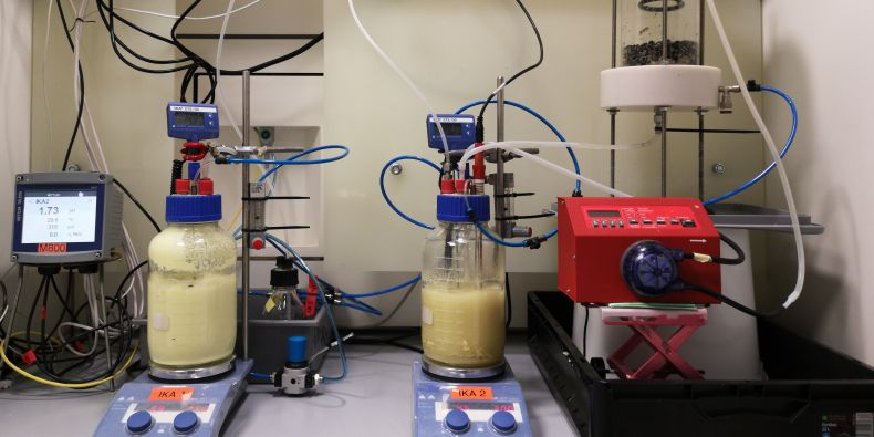 Přírodovědci testují využití bakterií pro získávání kovů z popílku a strusky.