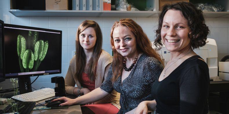 Research team at CEITEC Masaryk University: Jana Pečinková, Pavlína Mikulková a Soňa Valuchová.