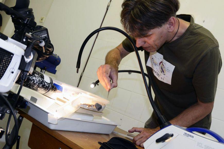 Stano Pekár (na snímku) publikoval článek, vněmž popisoval zvláštní pavoučí mimikry, už před 10 lety. Foto: David Povolný.