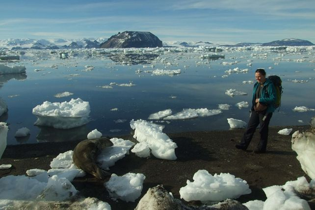 Nečekala jsem, že bude na Antarktidě takové teplo aže se zdejší zvířata skoro vůbec nebudou bát člověka, svěřila se Mašová. Foto: Olga Bohuslavová.