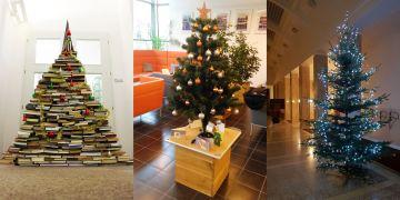 Knihovnický, malý, ale roztomilý a obrovský. Vánoční stromečky na FSS, PřF a PrF.