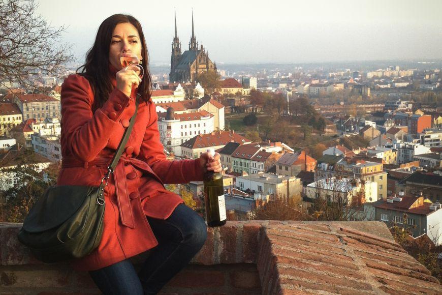 Vínko svýhledem na Brno.