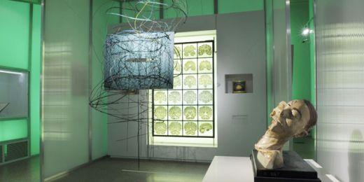Díla slavných umělců jsou vystavena v rovnocenné pozici například s digitální reprodukcí soudobého zobrazování mozku. Foto: Archiv Moravské galerie v Brně.