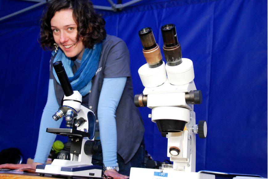 Vjednotlivých stáncích dali vědci nahlédnout do tajů vědy. Návštěvníci si mohli procvičit psychomotorické dovednosti, vyzkoušet si práci ekotoxikologa nebo luštit drátěné hlavolamy. Foto: Katarína Jablonská.