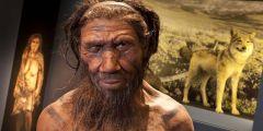 Model neandrtálského člověka z londýnského Přírodopisného muzea.