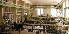 Knihovna vtéto podobě sloužila medikům. To, jak vypadá dnes, je výsledkem rekonstrukce zroku 2005.