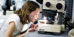 Děti hodně zajímaly různé preparáty nachystané v mikroskopech.